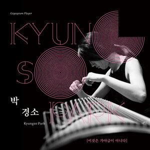 박경소 Kyungso Park 歌手頭像