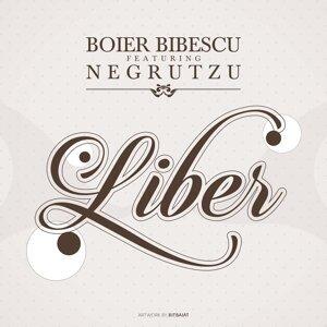 Boier Bibescu feat. Negrutzu 歌手頭像