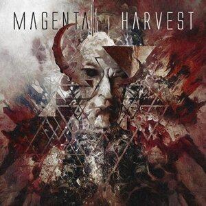 Magenta Harvest 歌手頭像