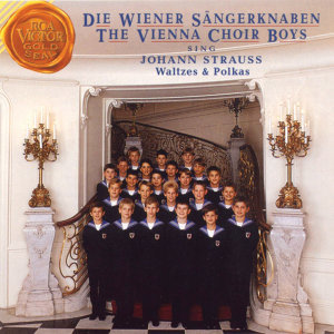 Die Wiener Sängerknaben 歌手頭像