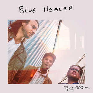 Blue Healer 歌手頭像