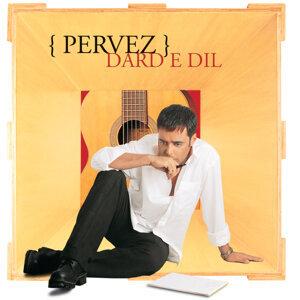 Pervez Quadir 歌手頭像