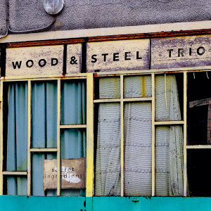 Wood & Steel Trio 歌手頭像