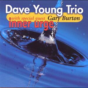 Dave Young Trio 歌手頭像