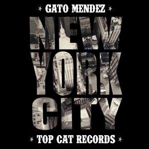 Gato Mendez 歌手頭像