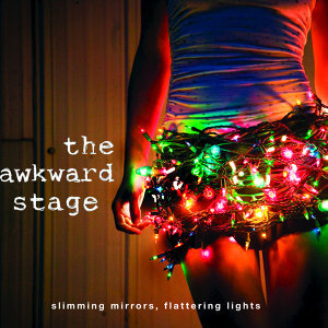The Awkward Stage 歌手頭像
