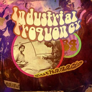 Industrial Frequency 歌手頭像
