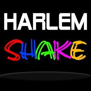 Harlem Shake 歌手頭像