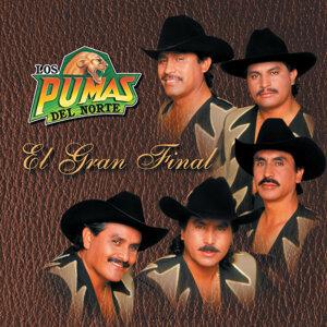 Los Pumas Del Norte 歌手頭像