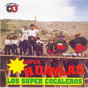 Los Super Cocaleros 歌手頭像