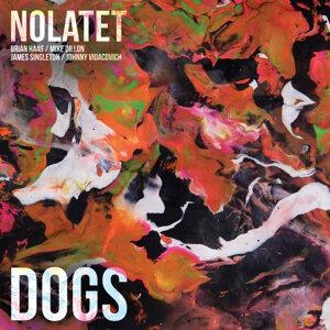 Nolatet 歌手頭像