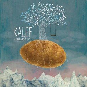 Kalef 歌手頭像