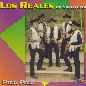 Los Reales De Nuevo Leon 歌手頭像