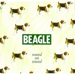 Beagle 歌手頭像