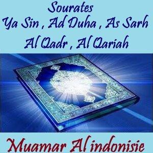 Muamar Al indonisie 歌手頭像
