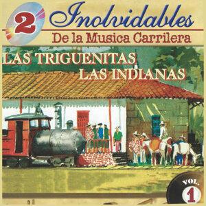 Las Triguenitas, Las Indianas 歌手頭像