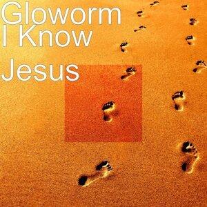 Gloworm 歌手頭像