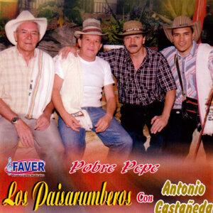 Los Paisarumberos 歌手頭像