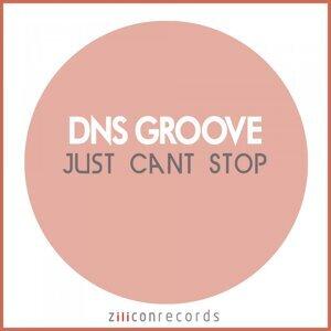 DNS Groove 歌手頭像