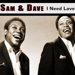 Sam & Dave (山姆& 戴夫)