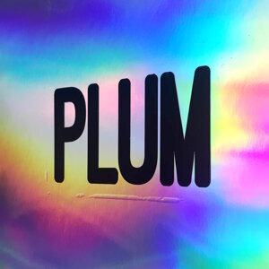Plum 歌手頭像
