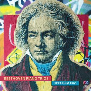 Seraphim Trio 歌手頭像