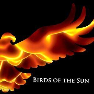 Birds of the Sun 歌手頭像