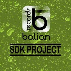 SDK Project 歌手頭像