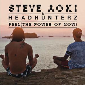 Steve Aoki, Headhunterz 歌手頭像