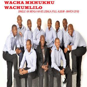 Wacha Mkhukhu Wachumlilo 歌手頭像