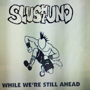Slushfund 歌手頭像