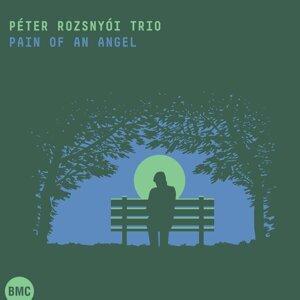 Péter Rozsnyói Trio 歌手頭像