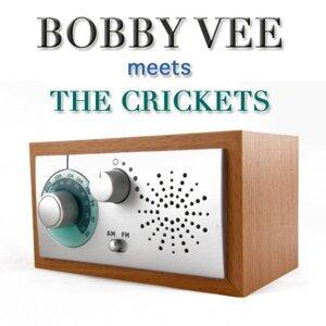 Bobby Vee Meets The Crickets 歌手頭像