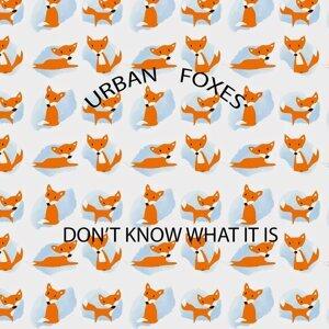 Urban Foxes 歌手頭像
