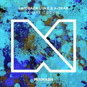 Laidback Luke & A-Track 歌手頭像