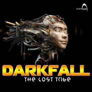Darkfall 歌手頭像