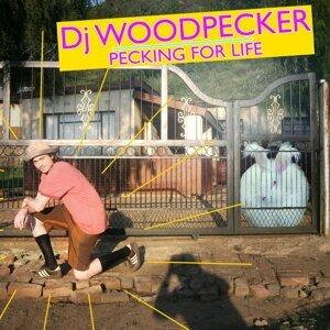 Dj Woodpecker 歌手頭像