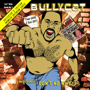 Bullycat 歌手頭像
