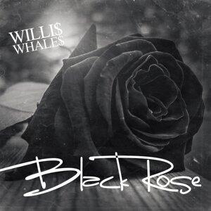 Willi$ Whale$ 歌手頭像
