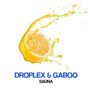 Droplex, Gaboo, Droplex, Gaboo 歌手頭像