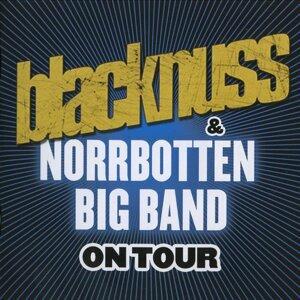 Blacknuss & Norrbotten Big Band 歌手頭像