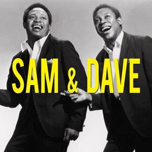 Sam, Dave 歌手頭像