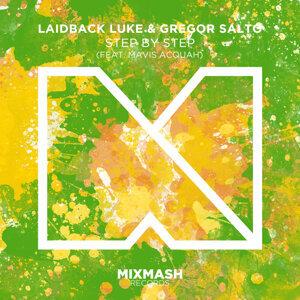 Laidback Luke & Gregor Salto ft. Mavis Acquah 歌手頭像
