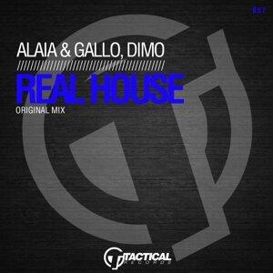 Alaia & Gallo & Dimo 歌手頭像