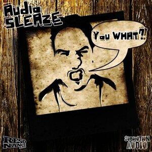 Audio Sleaze 歌手頭像