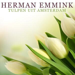Herman Emmink 歌手頭像