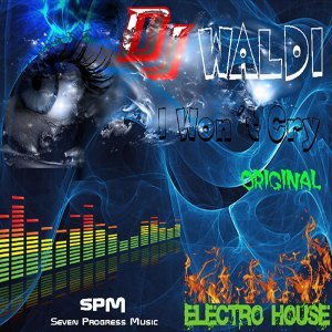 DJ Waldi 歌手頭像