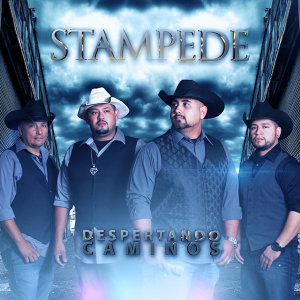 Stampede 歌手頭像