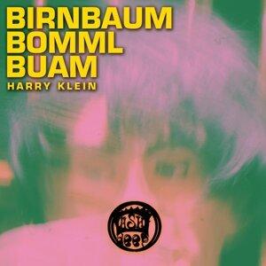 Birnbaum Bomml Buam 歌手頭像