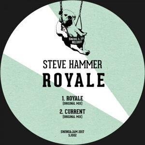 Steve Hammer 歌手頭像